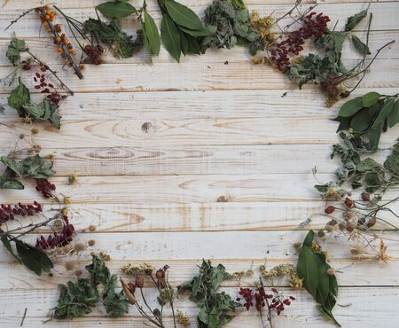 The concept of using medicinal dried herbs. Wooden white background with different medicinal herbs. Phytotherapy with herbs and flowers. Medicinal tea. Banco de Imagens
