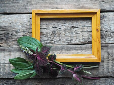 Empty picture frame and a bouquet of red coleus flower and green leaves on an ancient wooden background. A place for writing and text.
