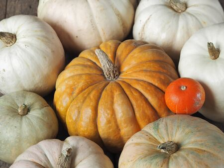 Autumn vegetable background. A group of pumpkin fruits on an ancient wooden table. Фото со стока