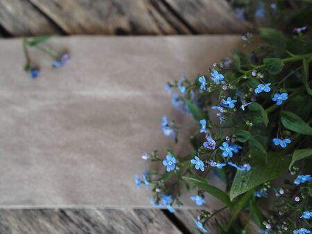 Empty sheet of beige paper for text and a bouquet of blue forget-me-not flowers on a wooden ancient background.