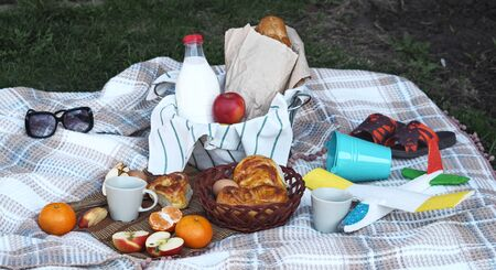 Spend time with children on a spring picnic on the grass.Food basket with long loaf, milk and homemade cakes on a plaid. Launch an airplane.