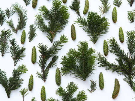 New Years greetings. Fir branches are laid out on a background. 免版税图像