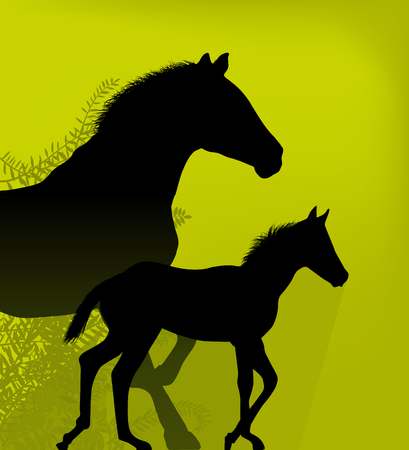 Two horses illustration isolated. Horse and colt.