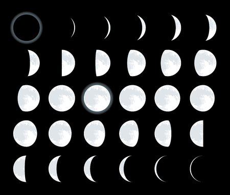 28 different lunar phases. Complete moon satellite cycle.