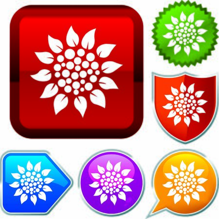 Set shiny icon series on buttons. Sunflower.