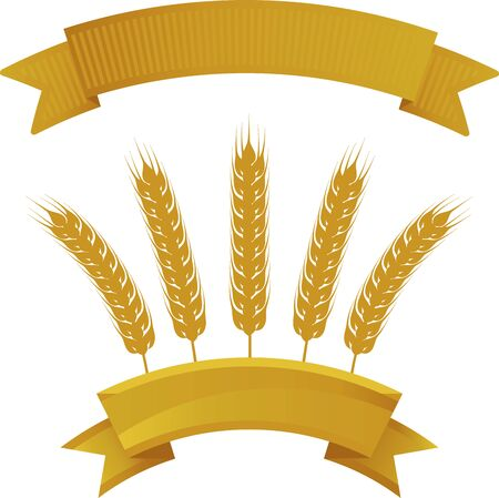 Wheat banner isolated with copy space and duplicate banner. Illustration