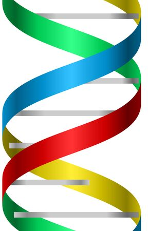 Metallic and colorful dna strand  icon image.
