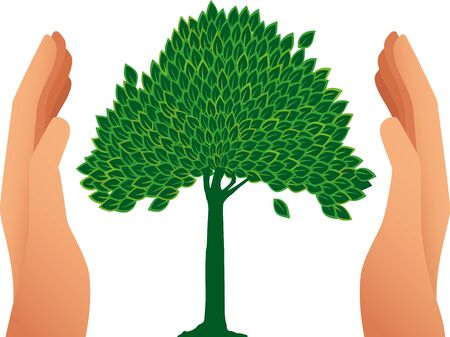 Vector illustration. Two hands caring a tree drawing. Environmental concept.
