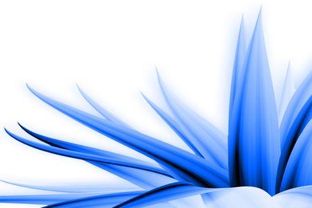 사진 기술 과정과 푸른 꽃 그림