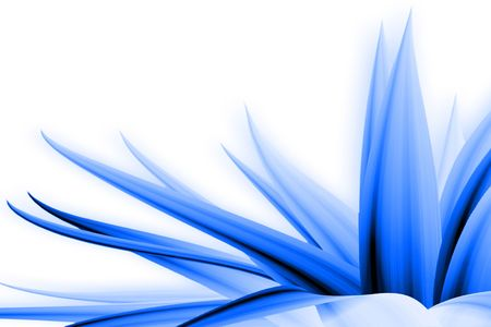 decorates: blue flower illustration with photographic processin