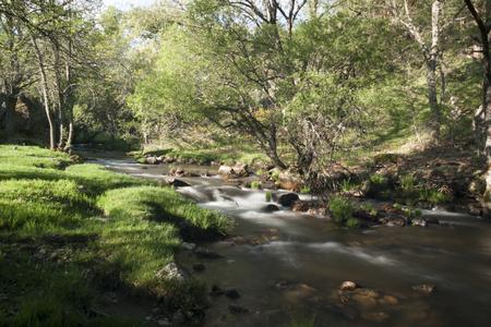River Cambrones in La Granja de San Ildefonso. Segovia, Sierra de Guadarrama National Park, Spain 写真素材