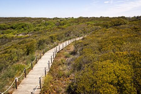 Fishermen's route in the Alentejo, promenade with cliffs in Portugal. Wooden walkway along the coastline.