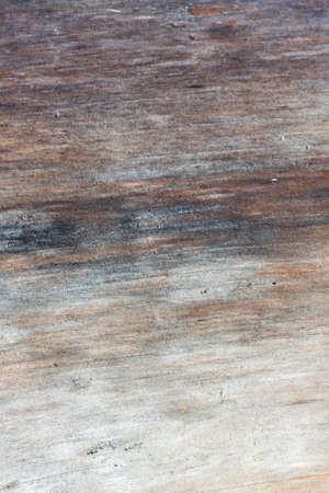 Natural wood background. Detailed graphic resource, freshly cut pine wood texture. Panoramic image in grunge style Reklamní fotografie