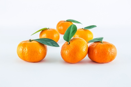 Mandarin orange, Citrus reticulata isolated on white background Stock Photo - 17714824