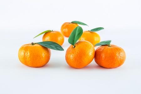 Mandarin orange, Citrus reticulata isolated on white background Stock Photo - 17714824