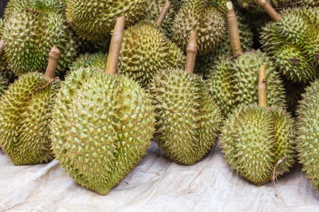 Durian, king of fruit, famous fruit in Thailand photo