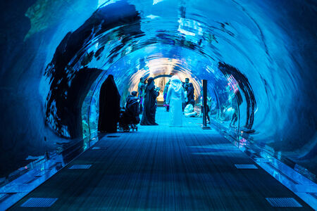 DUBAI, UAE - MARCH 28, 2014  People walking inside the Oceanarium tunnel iat Dubai Mall