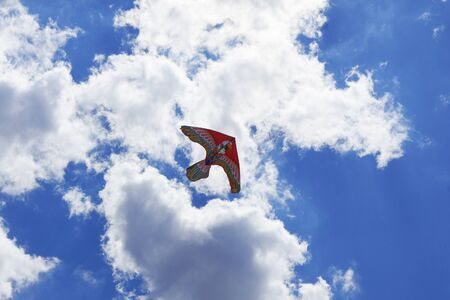 Nice kite flying colors against the blue sky  photo