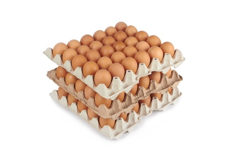 Group of fresh eggs in pater tray photo