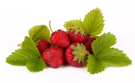 Strawberries with leaves on a white background   photo