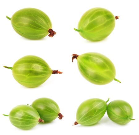 pulpy: Closeup of green gooseberry isolated on white background Stock Photo