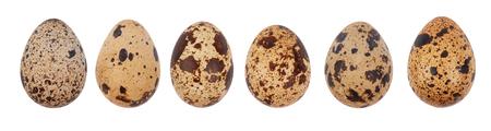 Przepiórki jaj samodzielnie na białym tle