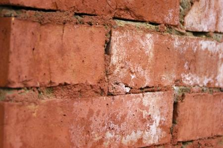 texture de brique dans le style grunge