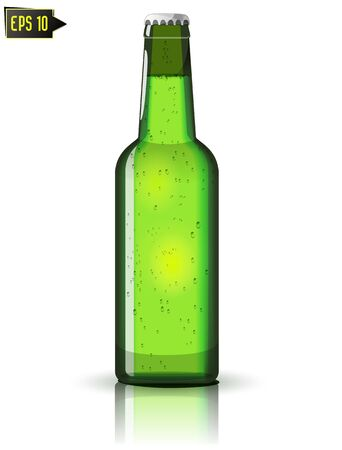 green beer bottle isolated with reflection Illustration