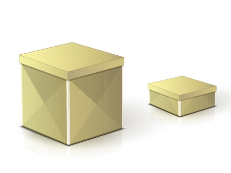 two realistic cardboard boxes on a white background with shadows and reflections
