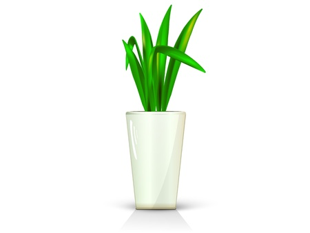 flower in glossy beige pot, realistic, volume with the reflection of the