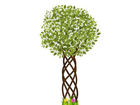 녹색 나뭇잎과 아름다운 디자이너 나무