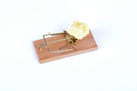 mouse trap: mouse trap on white Stock Photo