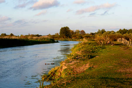 the color of silence: photo showing the bank of the river Biebrza