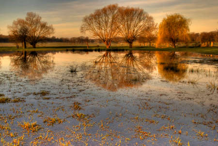 Richmond Park photo