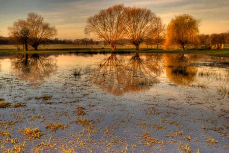 yellowautumn: Richmond Park