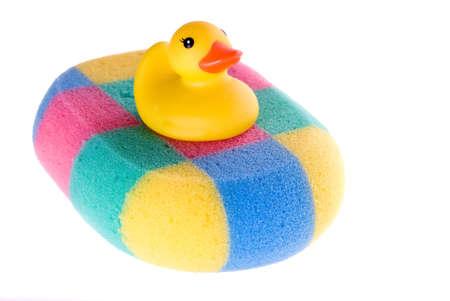 Yellow duck in colors sponge Stock Photo