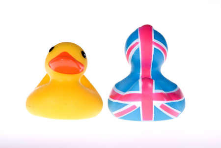 Two rubber duck in white Stock Photo - 4162257