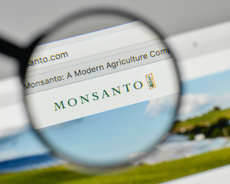 Milan, Italy - November 1, 2017: Monsanto logo on the website homepage. 新聞圖片
