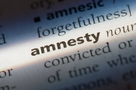 Amnesty word in a dictionary. Amnesty concept Stok Fotoğraf