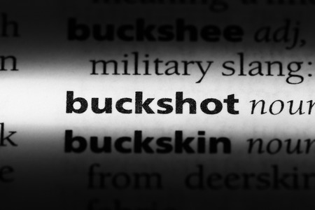 buckshot word in a dictionary. buckshot concept.