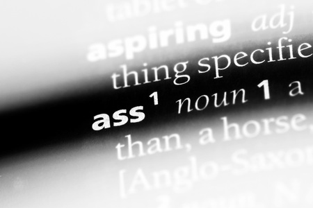 ass word in a dictionary. ass concept. Imagens