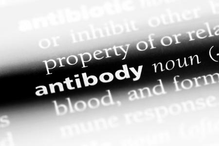 antibody word in a dictionary. antibody concept. Foto de archivo - 99601690