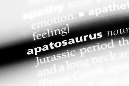 apatosaurus word in a dictionary. apatosaurus concept.