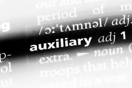 auxiliary word in a dictionary. auxiliary concept.