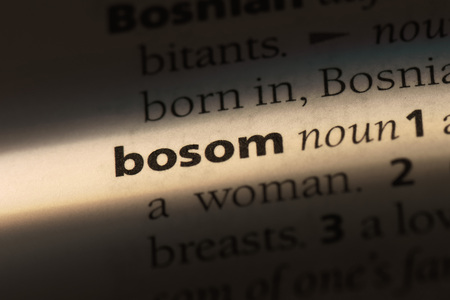bosom word in a dictionary. bosom concept.