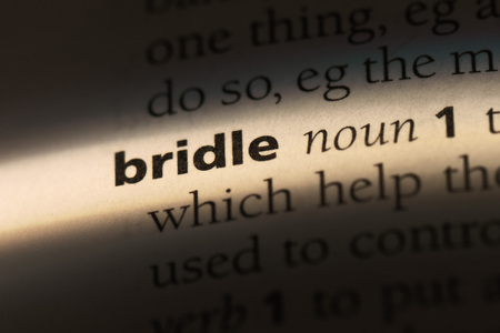bridle word in a dictionary. bridle concept.