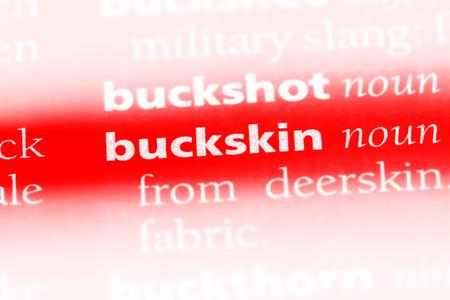 buckskin word in a dictionary. buckskin concept. Stock fotó