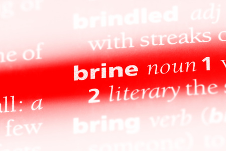 brine word in a dictionary. brine concept.