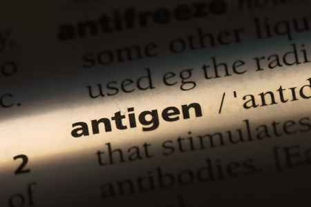 antigen word in a dictionary. antigen concept.