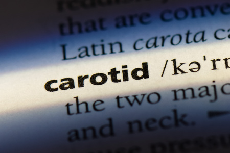 carotid word in a dictionary. carotid concept.